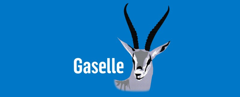 What does it take to be a Gazelle?